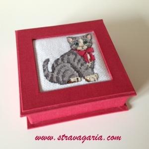 foto gatto1