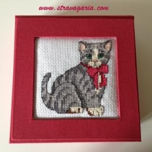 foto gatto2